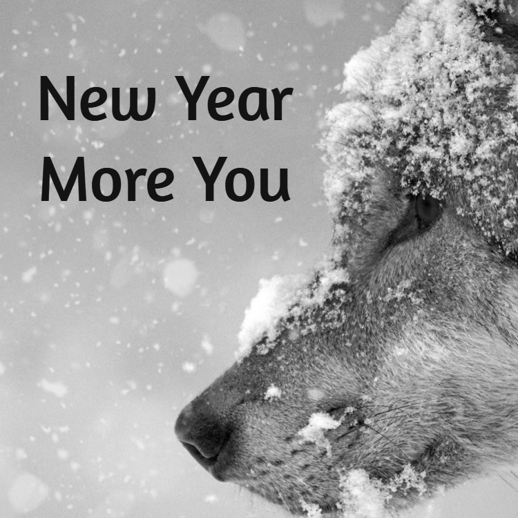 New Year, More You